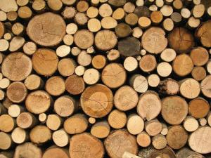 background_logs-1-custom.jpg